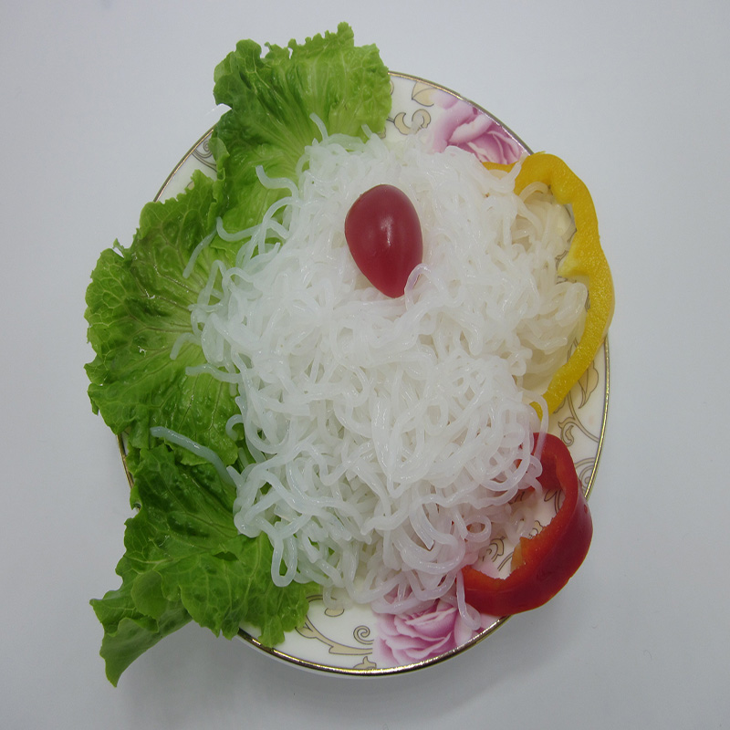 Diet Konjac Shirataki Spaghetti with Gluten-Free Low-Calorie