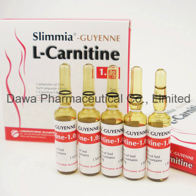 Good Effect for Body Building Loss Weight L-Carnitine Injection 1.0g