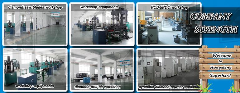 PCD Polycrystalline Diamond Die Blanks
