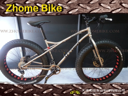 Bicycles Parts/Fat Bike Frame and Fork/Fat E-Bike Frame