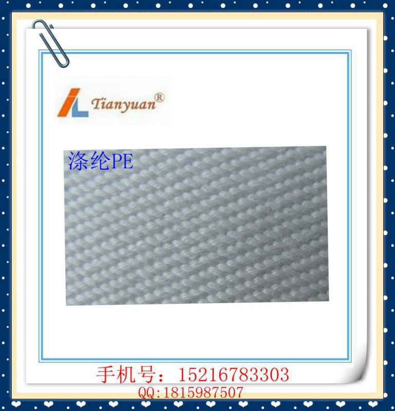 Polyester PE Filter Press Cloth
