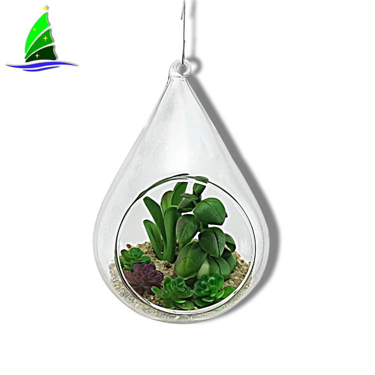 Glass Hanging Succulents Terrariums