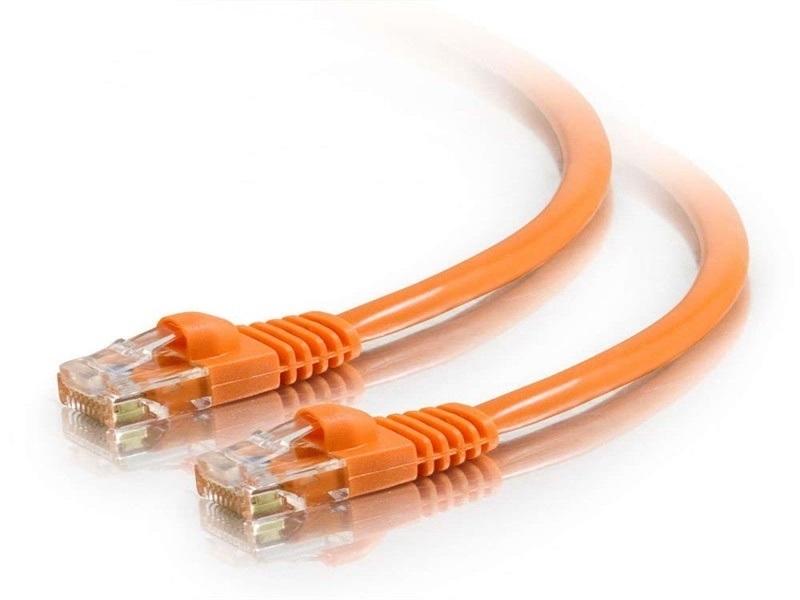 Chat. Cordon de brassage de câble LAN 5e / 6 UTP 4 paires 24AWG