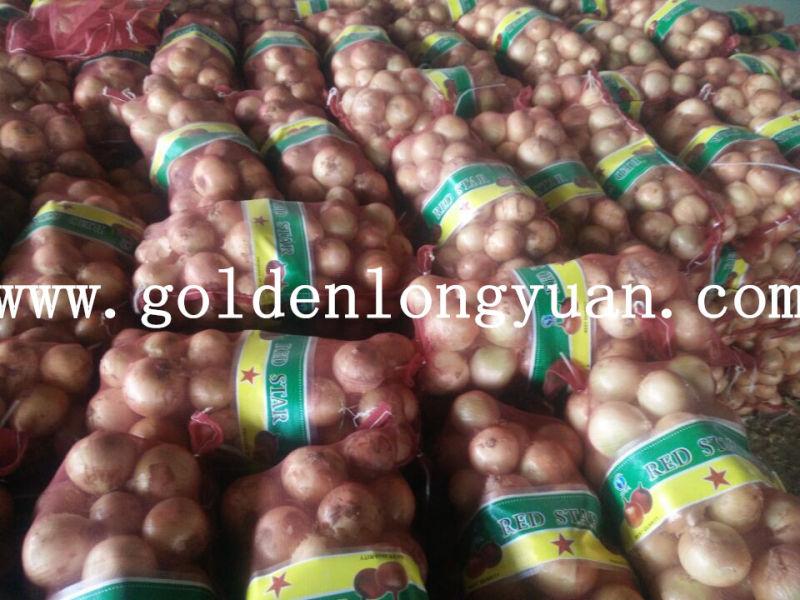 2016 New Season Fresh Yellow Onion