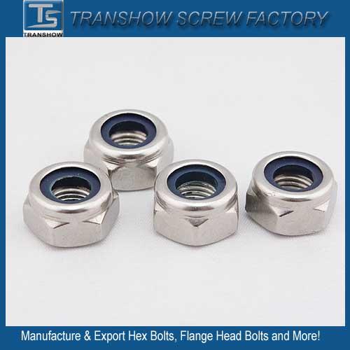 DIN985 M14 Ss304 Nylon Lock Nut