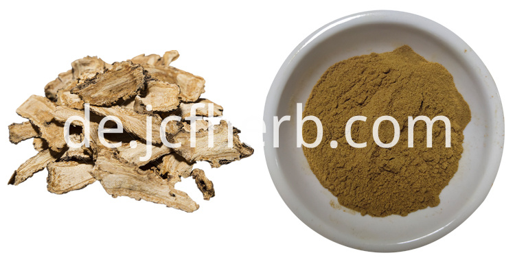 Angelica Dahurica Extract