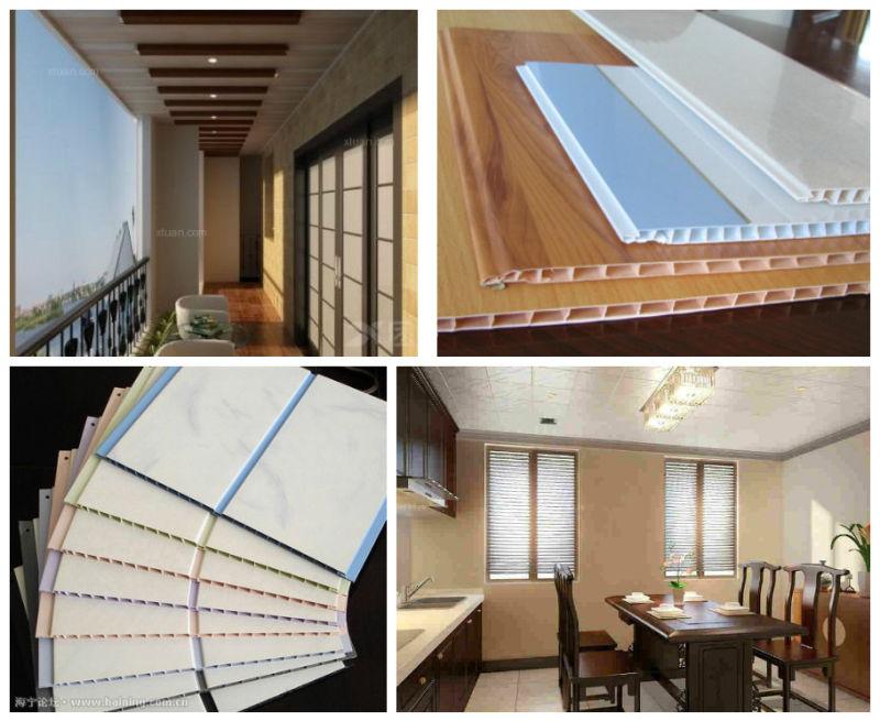 PVC Ceiling Panel Making Machine Extruder Machine (SJSZ)