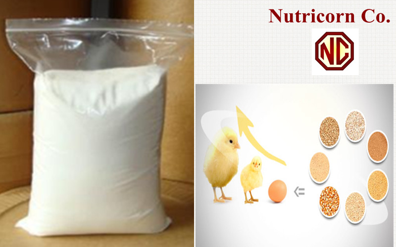 Supply Good Quality Feed Additive L-Tryptophan