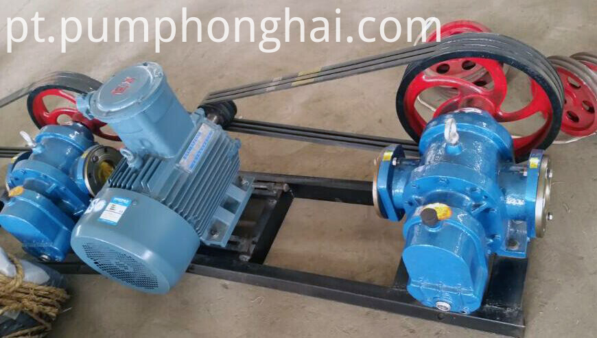 lobe oil pump with heat insulating