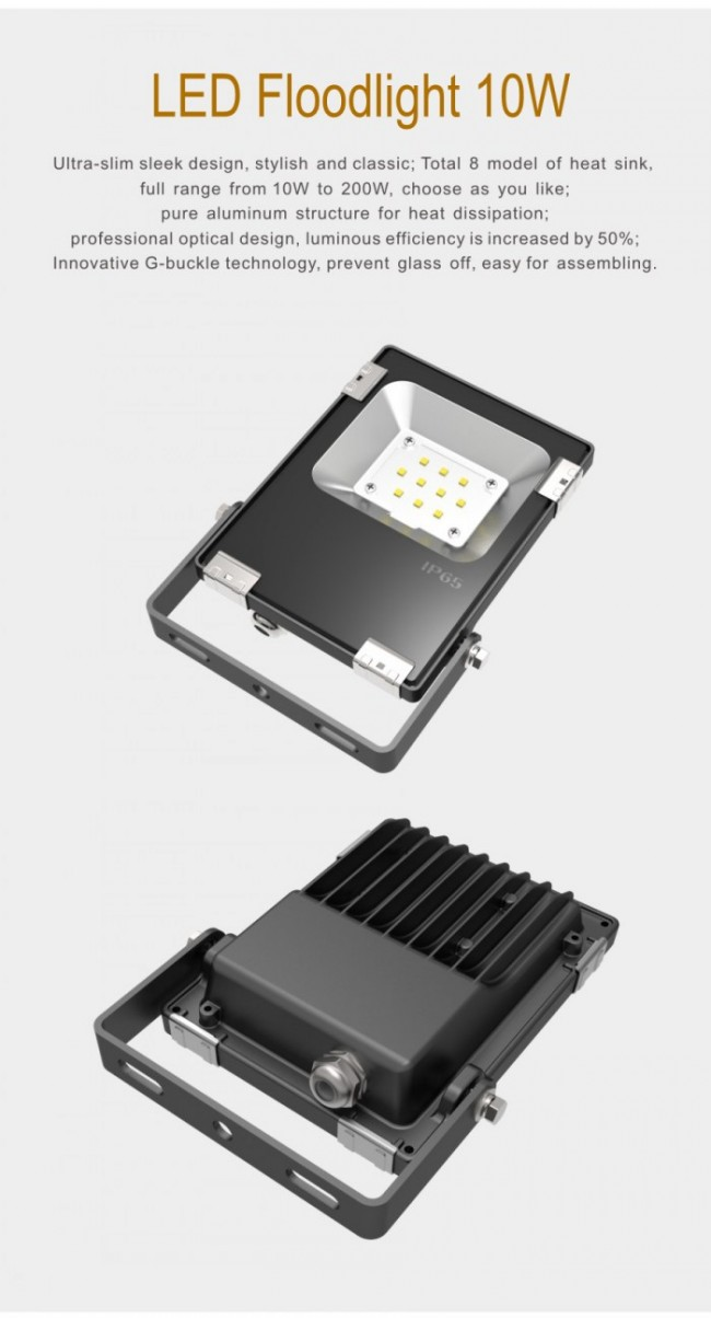 LED Light Outdoor 10W LED Flood Lighting IP65 Waterproof Ce RoHS
