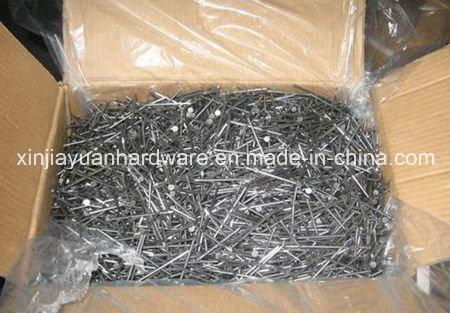 Polished and Galvanized Common Iron Nail