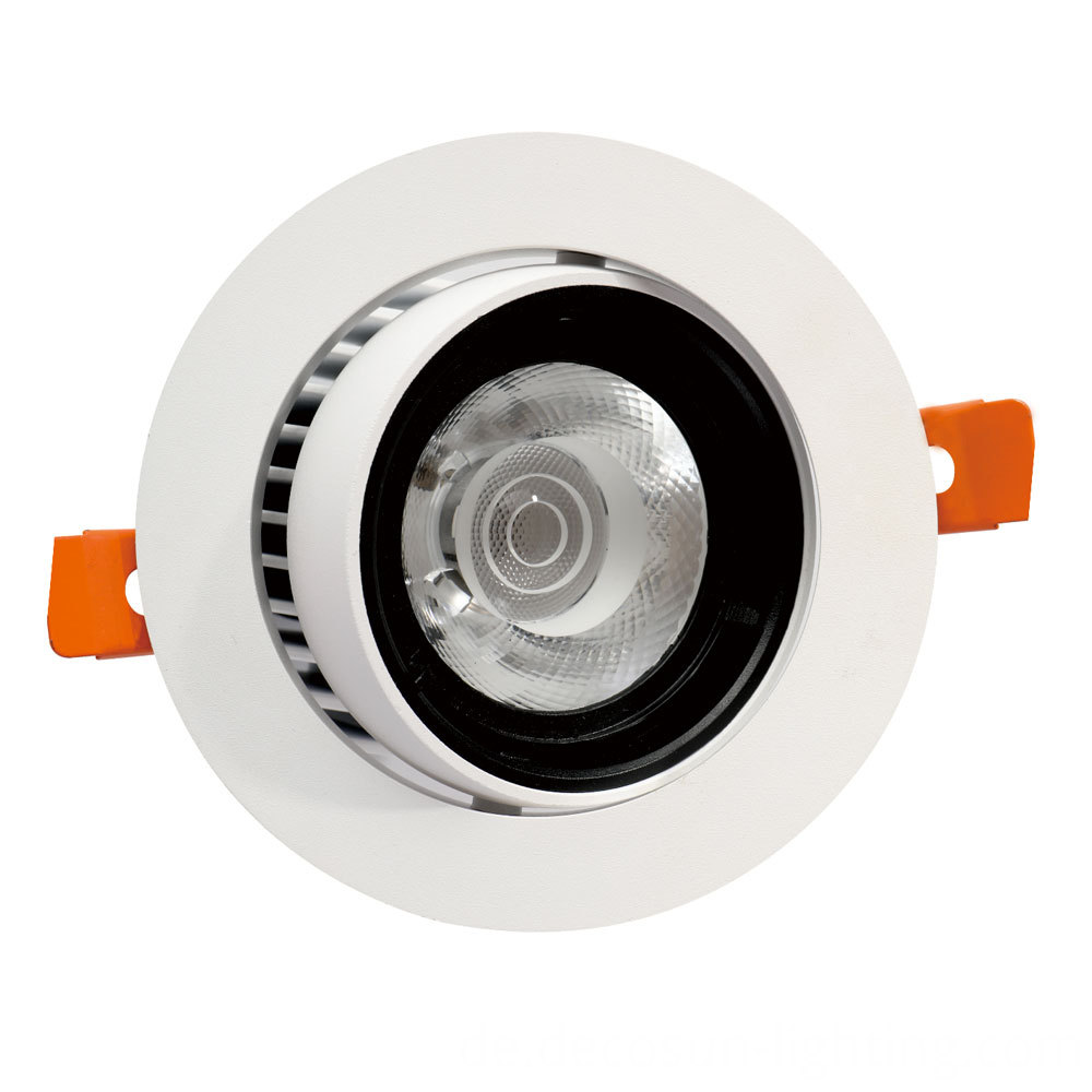 Adjustable LED Down Light