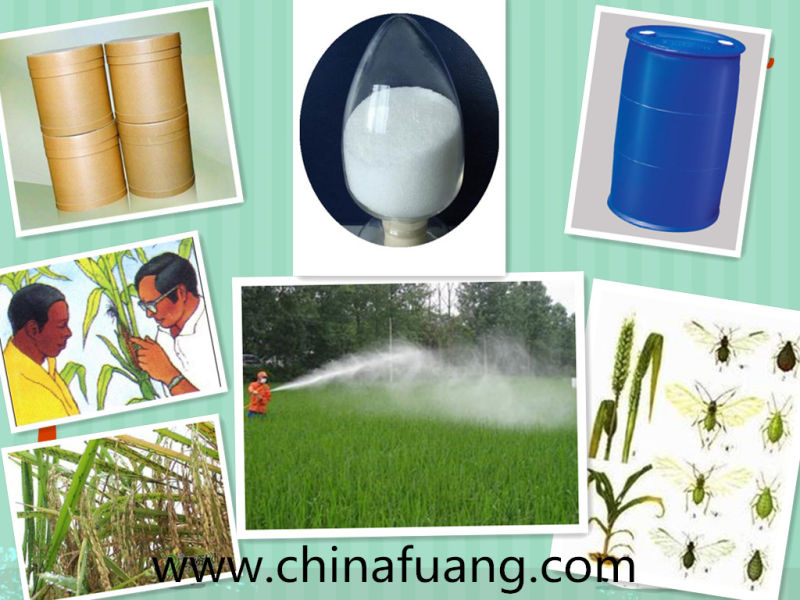 Agrochemicals Insecticide Pesticide 98% Tc, 25g/L Ec, 2.5%Wp, 5%Wp Deltamethrin
