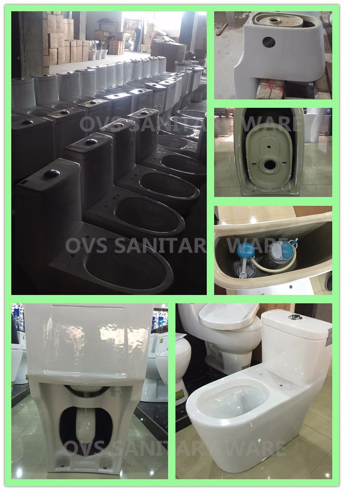 Hot Sale One Piece Water Saving Toilet American Standard