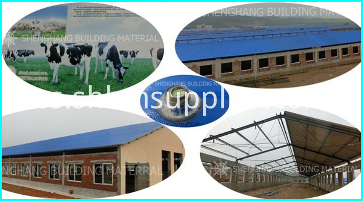 Feeding Farm MGO Roofing Sheets