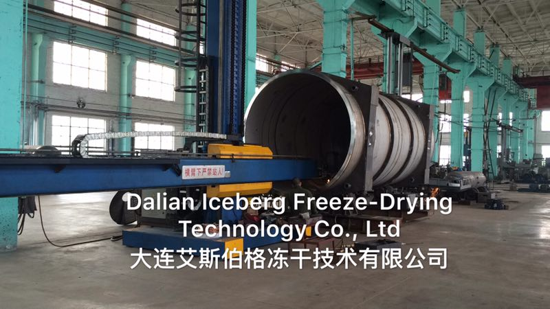 Dalian Iceberg Freeze-dry Technology Co.,Ltd