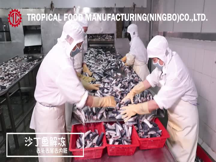 Tropical Food Ningbo Factory Canned Sardine Processing.mp4