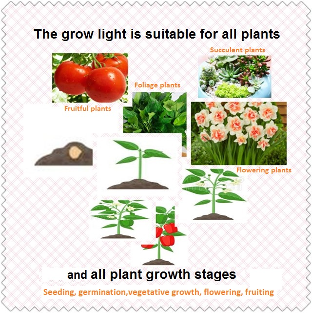 Suitable for all plants and all stages