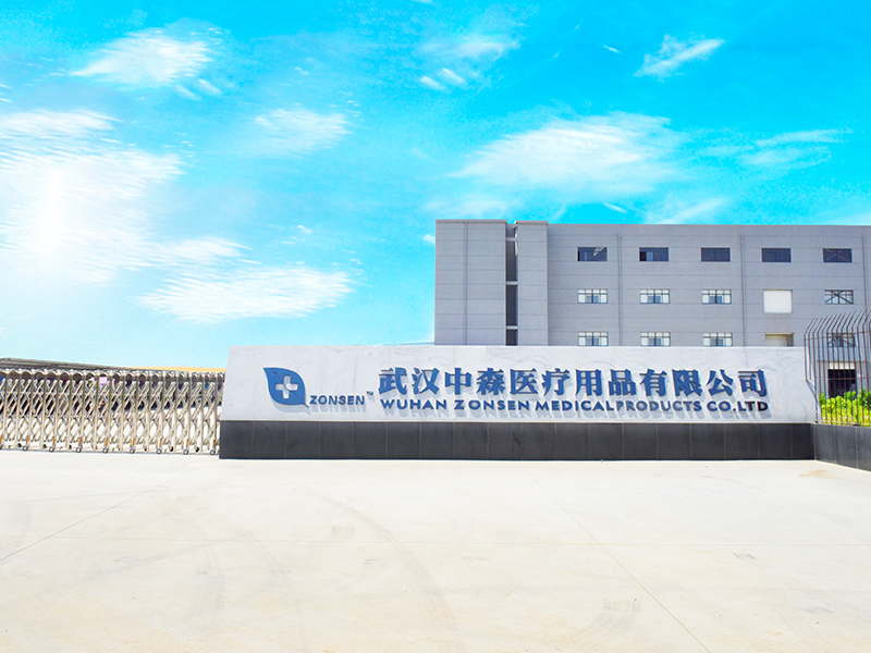 Wuhan Zonsen Medical Products Co.,Ltd
