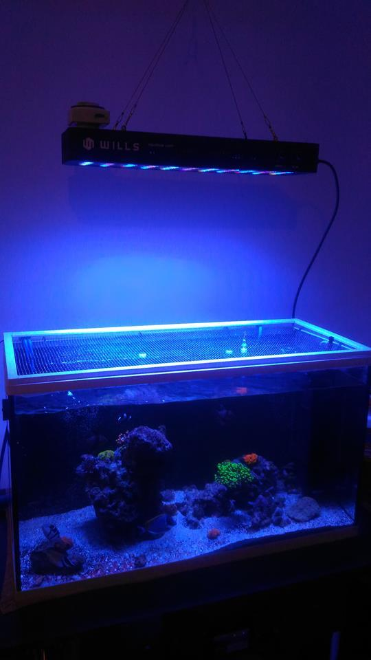 165W LED Aquarium Lights