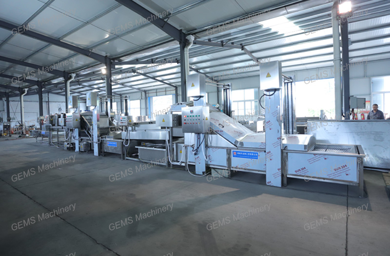 fruit & vegetable washing machine, fruit & vegetable washing production line
