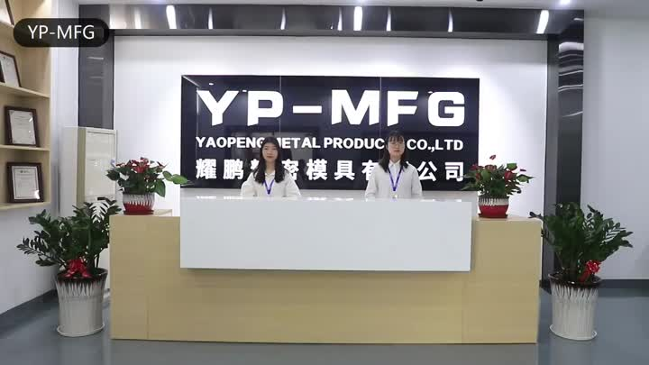 Company Video.mp4