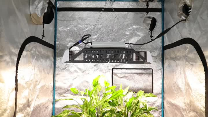 240w led grow light (1) .mp4