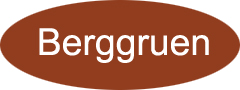 Berggruen Technology Co.,Ltd