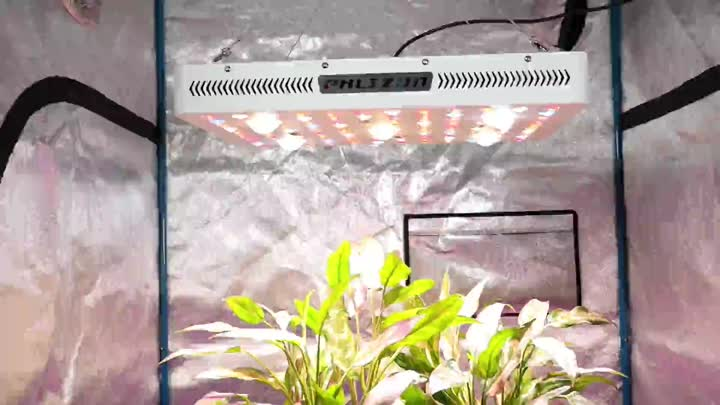 2530 Cree COB Led Grow Light