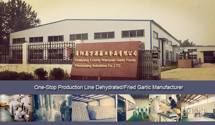Huaiyang County Wanyuan Garlic Foods Processing Industries Co.,Ltd