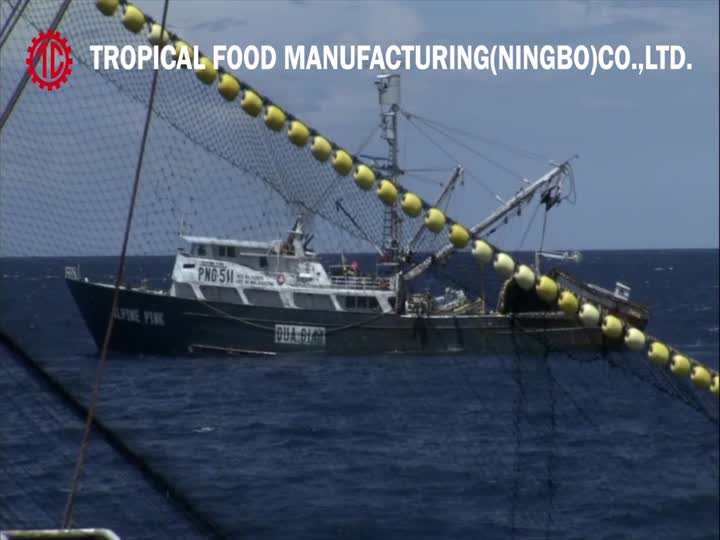 Tropical Food Ningbo Factory Canned Tuna Processing.mp4