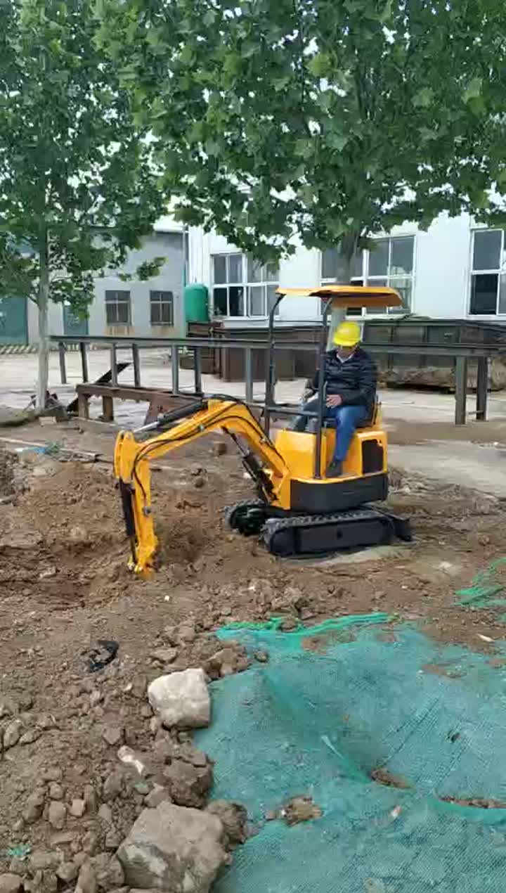 mini excavator xn08 with eap gas engine (3)