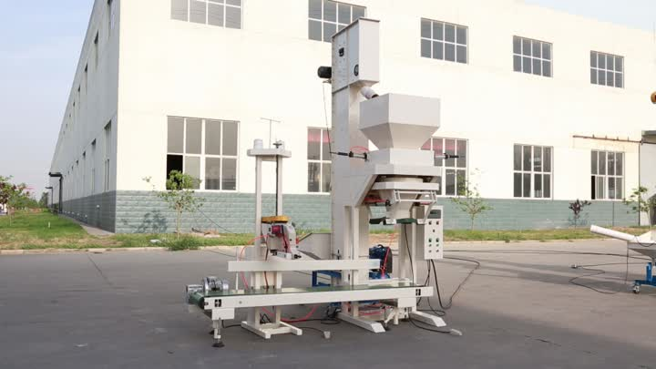 DCS-50B Bagging Scale System packing wheat.mp4