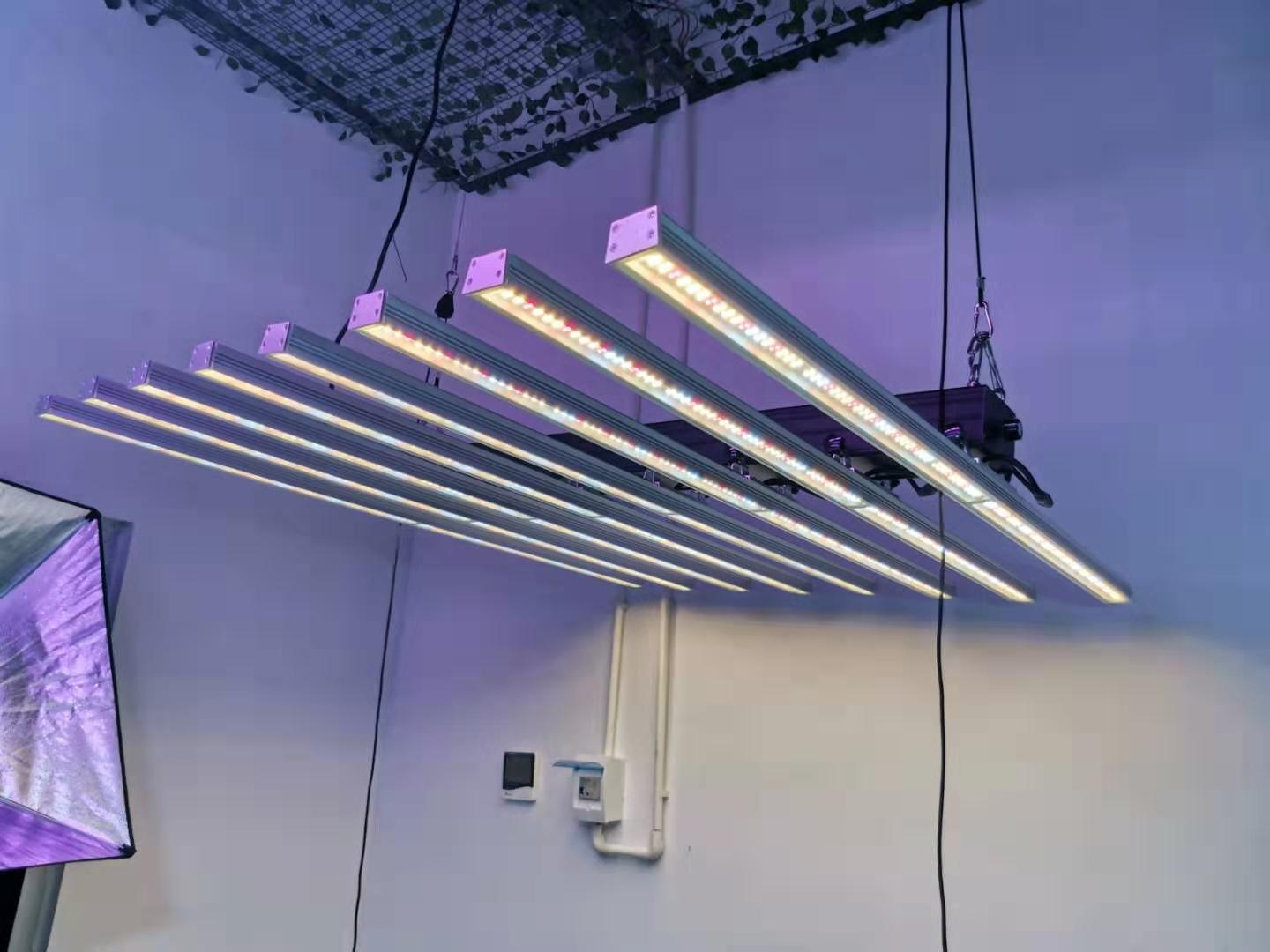 Octopus LED Grow light