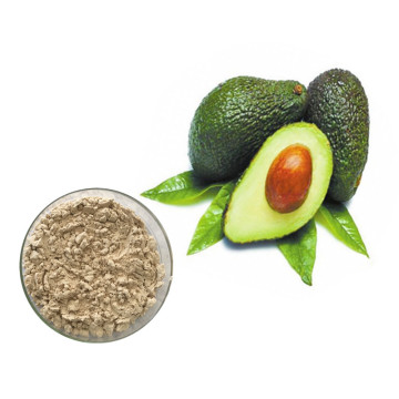 Antioxidants Fresh Avocado Fruit Extract Powder