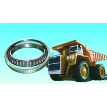 Heavy Truck Bearing 10079/900