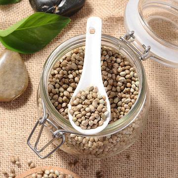 Sale Bulk Conventional Hemp Seeds