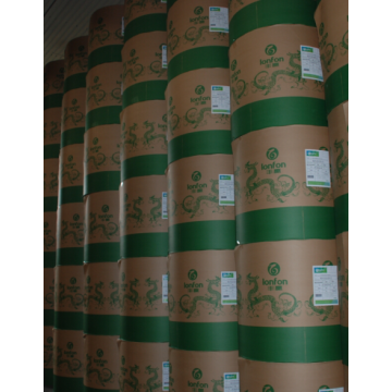 Uncoated Woodfree Offset Paper 55-110gsm