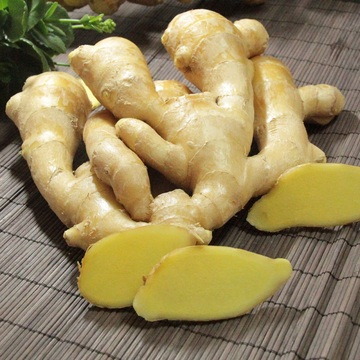 Condiment Yellow Ginger for Bangladesh