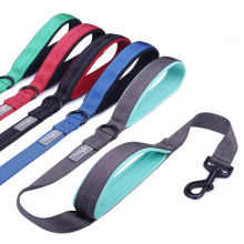 Two Handles Dog Leash