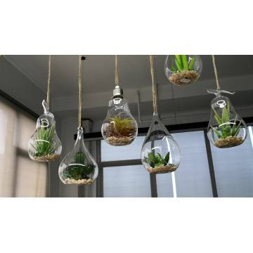 glass terrarium plants with hole Hanging Vase