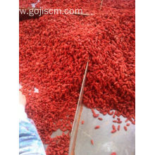 LOW PRICE NINGXIA DRIED ORGANIC GOJI BERRY Delicious