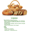 Food grade baking phospholipase enzyme