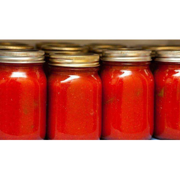 140g Organic Glass Bottle Tomato Paste