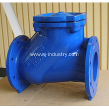 Cast Iron Ball Check Valve