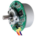 37V Brushless Motor, 250W Brushless DC Motor & Brushless Motor for Lawn Mower Customizable