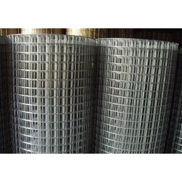 Galvanized Welded Wire Mesh pvc coated