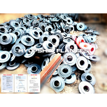 Forging / Forged Pipe Flange Carbon Steel Flanges