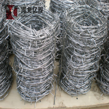 Galvanized coated barbed wire coil/barbed iron wire