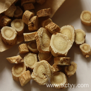 codonopsis pilosula root food
